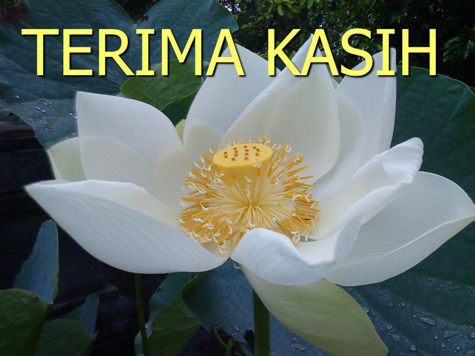 TERIMA KASIH DPPKAD - 2013