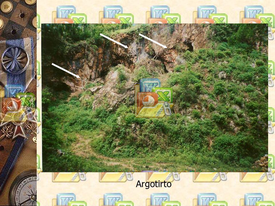 Argotirto