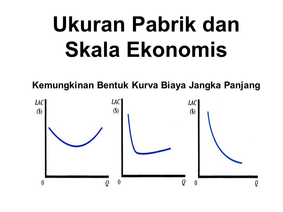 Ukuran Pabrik dan Skala Ekonomis