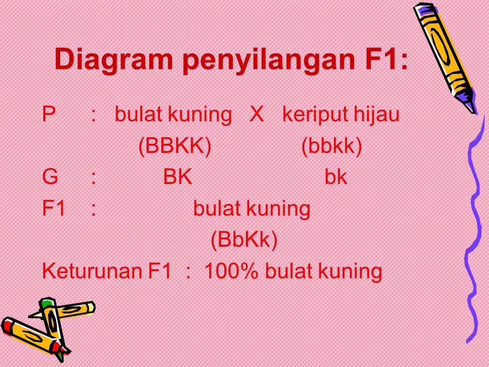 Diagram penyilangan F1: