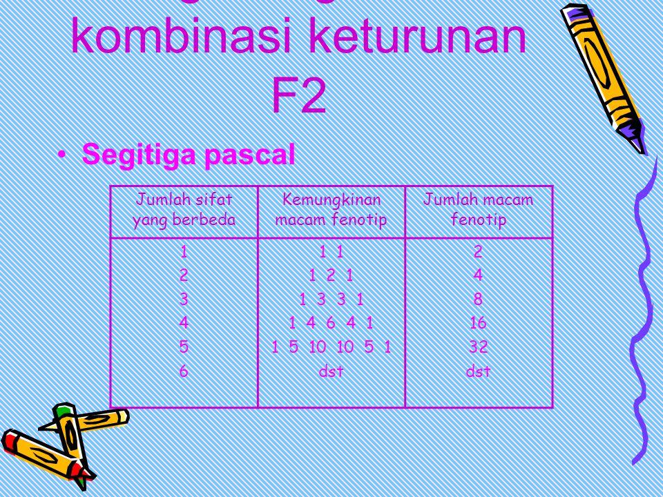 Menghitung macam kombinasi keturunan F2