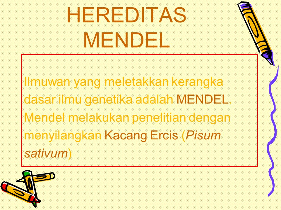 HEREDITAS MENDEL Ilmuwan yang meletakkan kerangka
