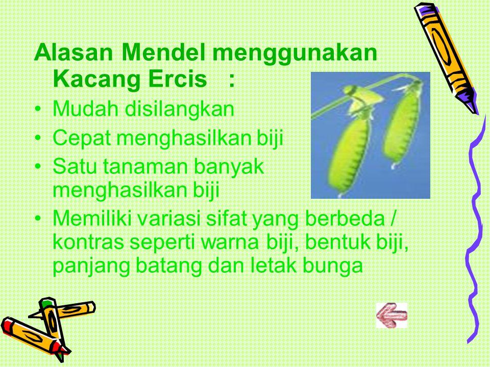 Alasan Mendel menggunakan Kacang Ercis :
