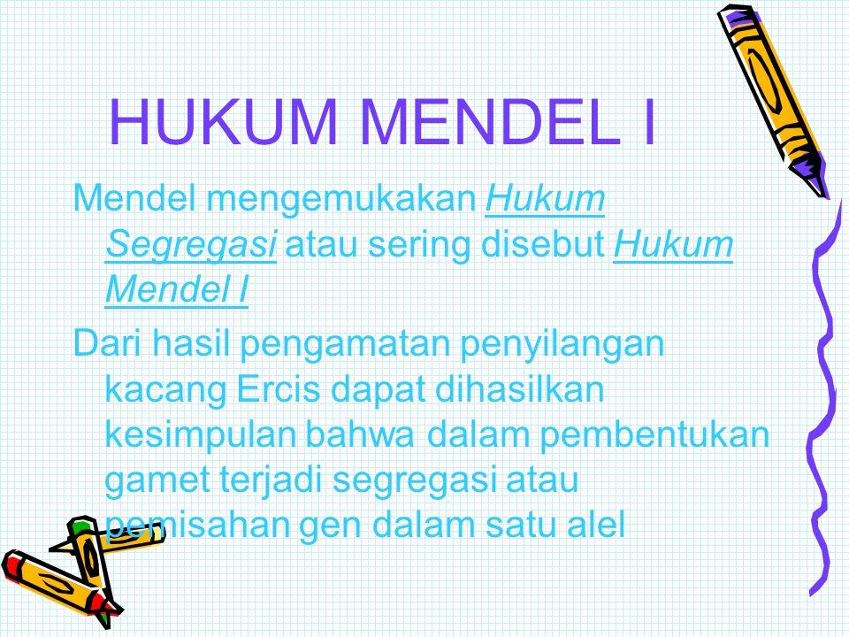 HUKUM MENDEL I Mendel mengemukakan Hukum Segregasi atau sering disebut Hukum Mendel I.