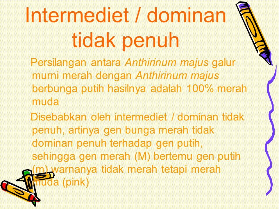 Intermediet / dominan tidak penuh