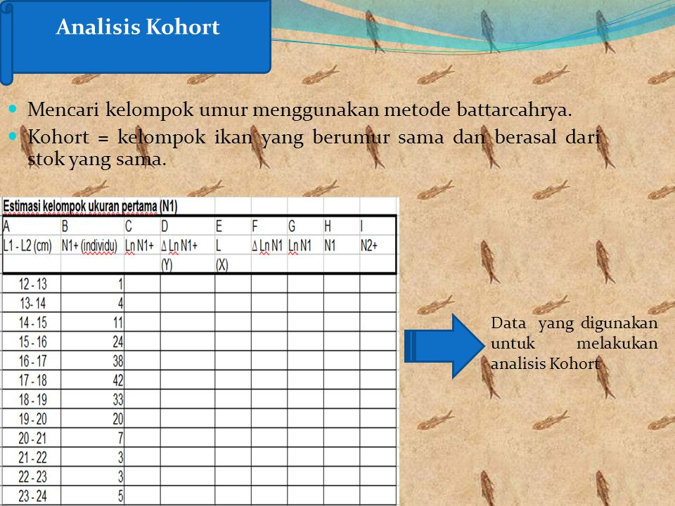 Analisis Kohort Mencari kelompok umur menggunakan metode battarcahrya.