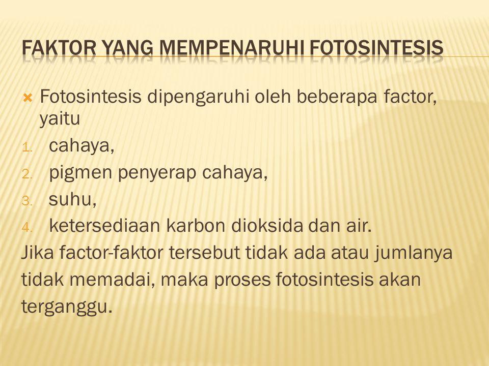 Faktor yang mempenaruhi fotosintesis