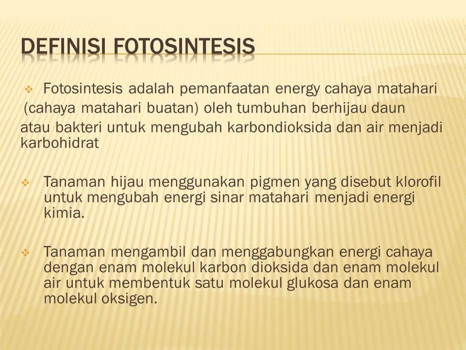 Definisi fotosintesis