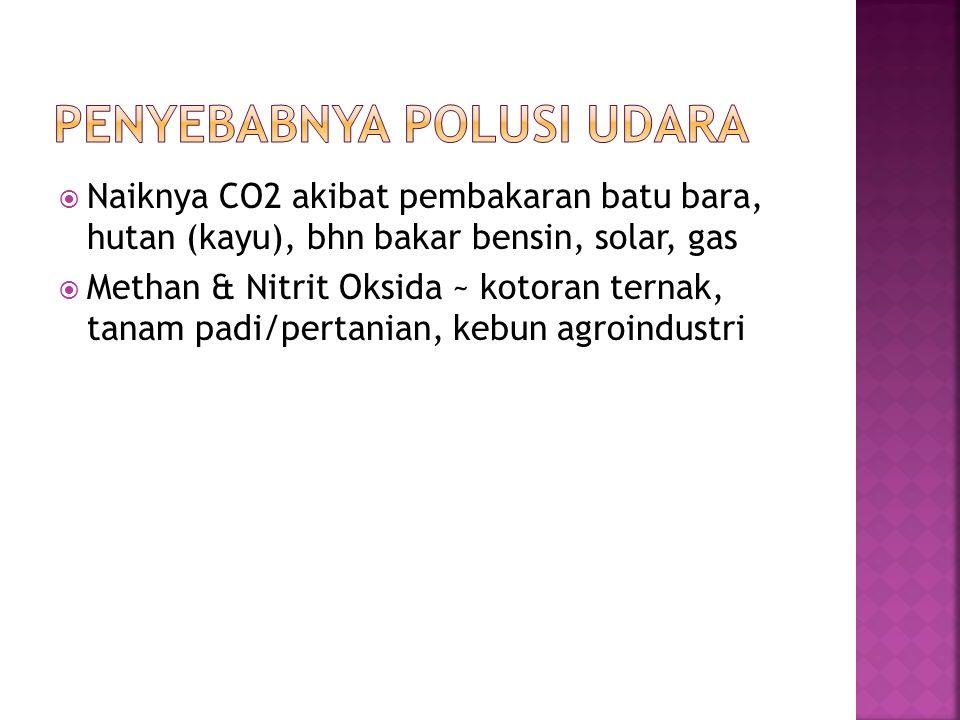 Penyebabnya Polusi udara