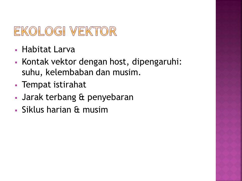 Ekologi Vektor Habitat Larva
