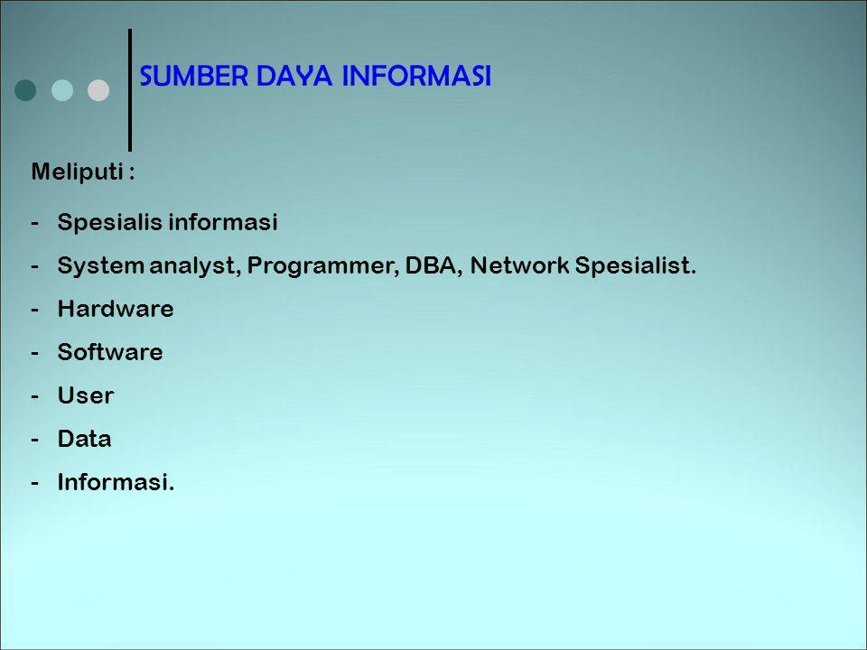 SUMBER DAYA INFORMASI Meliputi : Spesialis informasi