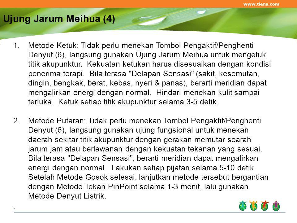 www.tiens.com Ujung Jarum Meihua (4)