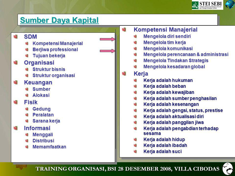 Sumber Daya Kapital Kompetensi Manajerial SDM Organisasi Kerja