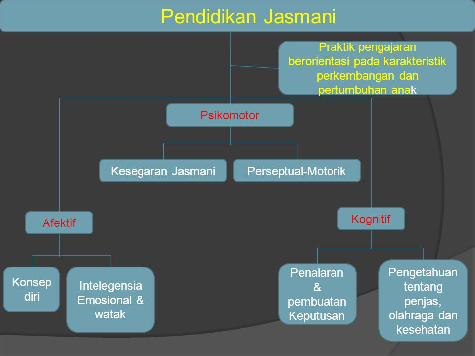 Pendidikan Jasmani Praktik pengajaran berorientasi pada karakteristik perkembangan dan pertumbuhan anak.