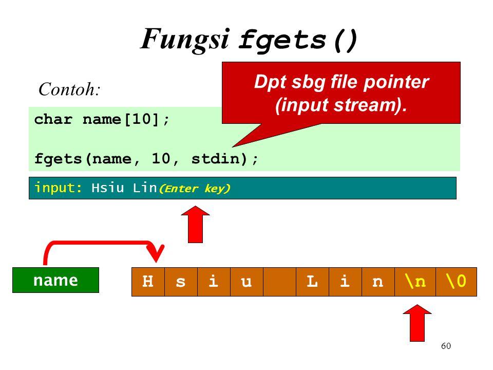 Dpt sbg file pointer (input stream).