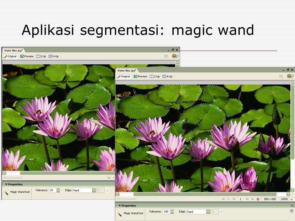Aplikasi segmentasi: magic wand