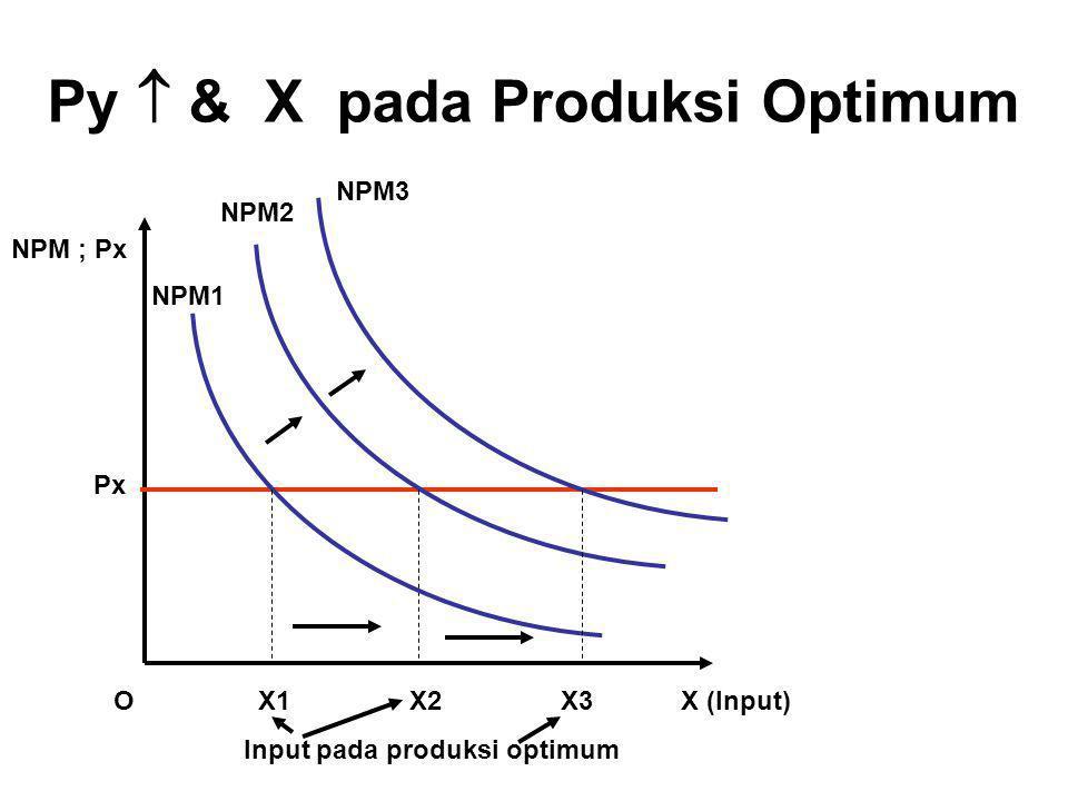 Py  & X pada Produksi Optimum