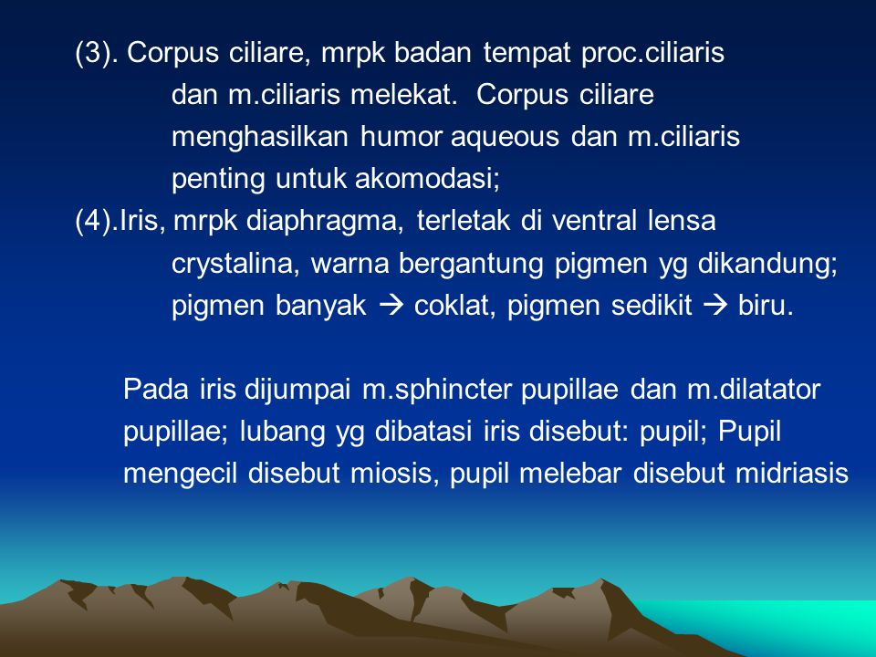 (3). Corpus ciliare, mrpk badan tempat proc.ciliaris