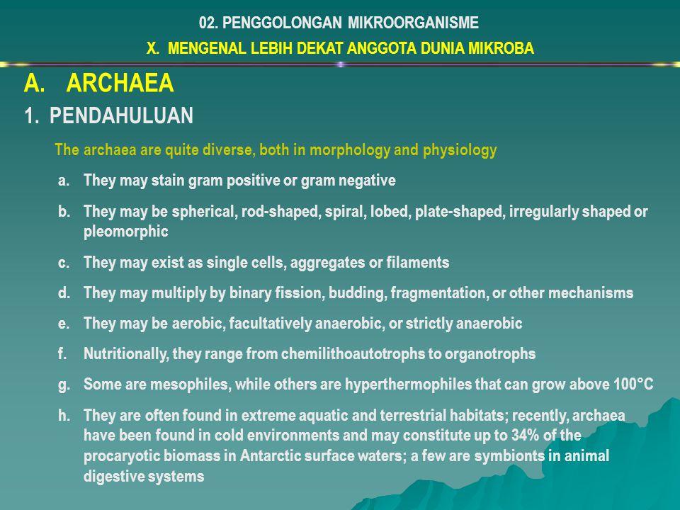ARCHAEA PENDAHULUAN 02. PENGGOLONGAN MIKROORGANISME