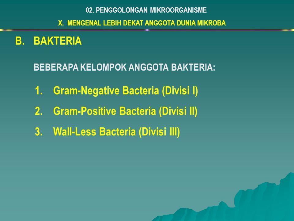 Gram-Negative Bacteria (Divisi I) Gram-Positive Bacteria (Divisi II)