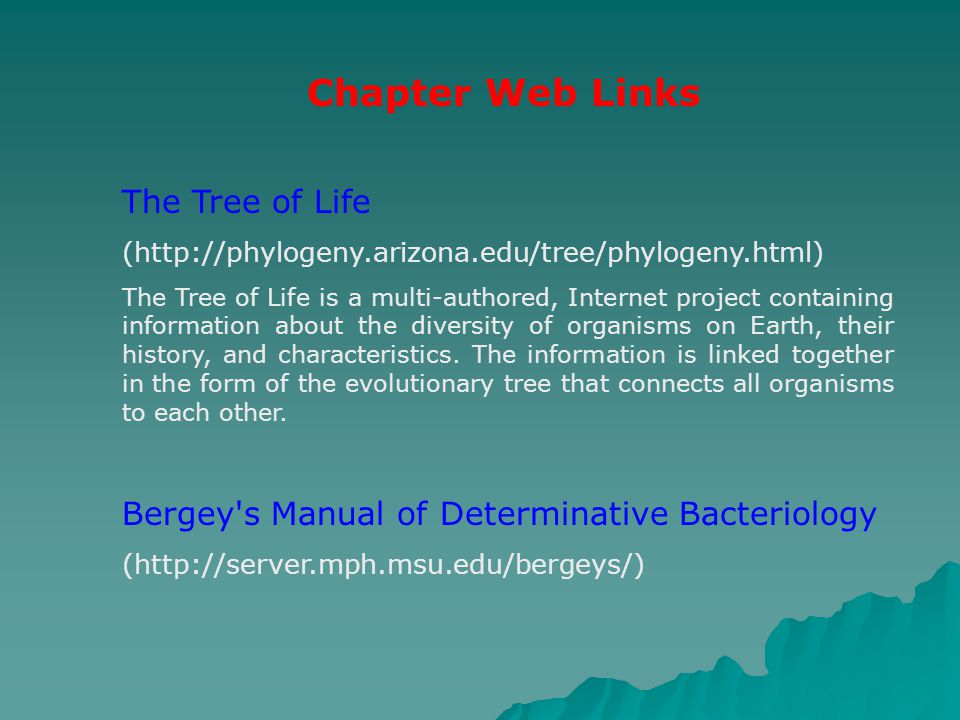Chapter Web Links The Tree of Life