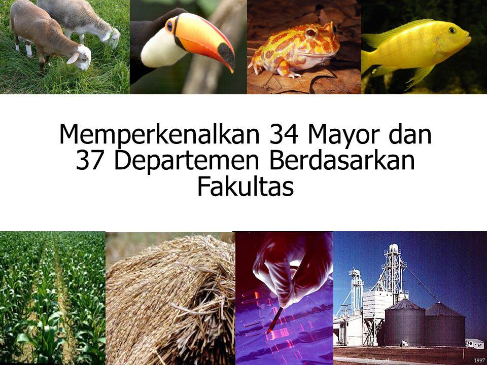 Memperkenalkan 34 Mayor dan 37 Departemen Berdasarkan Fakultas
