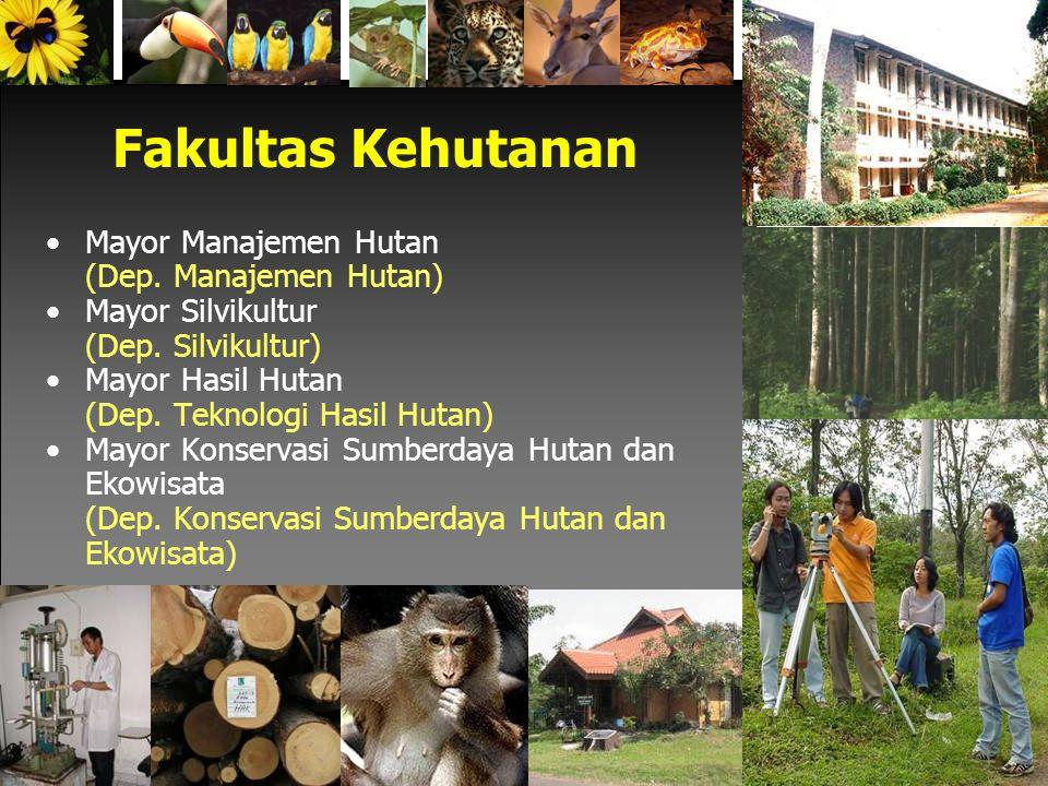 Fakultas Kehutanan Mayor Manajemen Hutan (Dep. Manajemen Hutan)