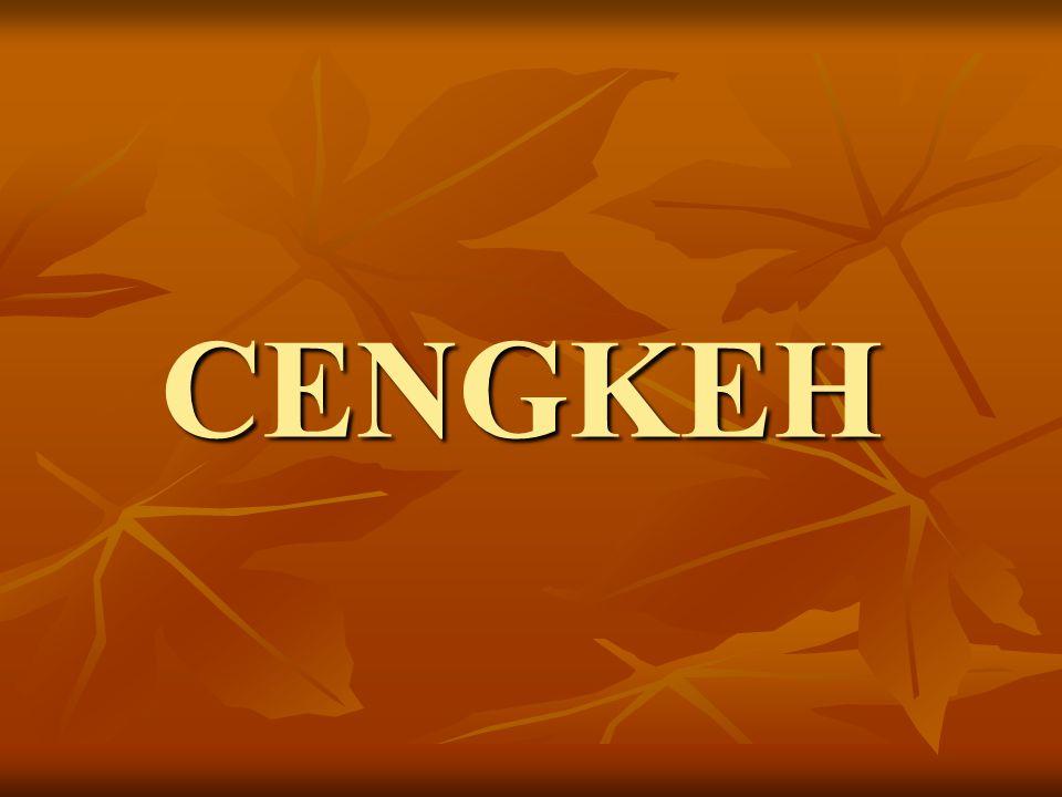 CENGKEH