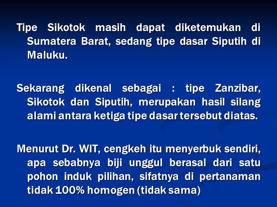 Tipe Sikotok masih dapat diketemukan di Sumatera Barat, sedang tipe dasar Siputih di Maluku.