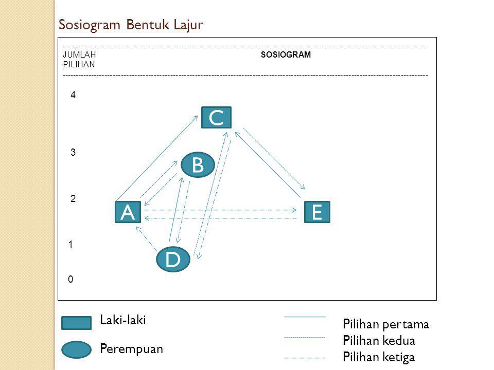 C B A E D Sosiogram Bentuk Lajur Laki-laki Pilihan pertama