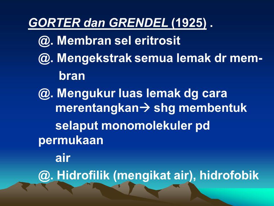 GORTER dan GRENDEL (1925) . @. Membran sel eritrosit. @. Mengekstrak semua lemak dr mem- bran.