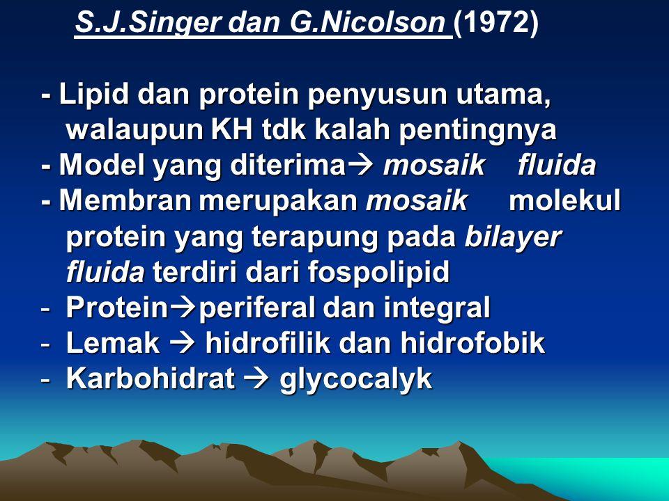 S.J.Singer dan G.Nicolson (1972)