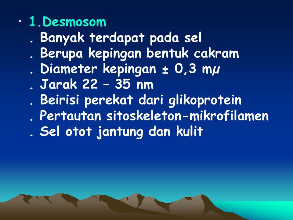 1. Desmosom. Banyak terdapat pada sel. Berupa kepingan bentuk cakram