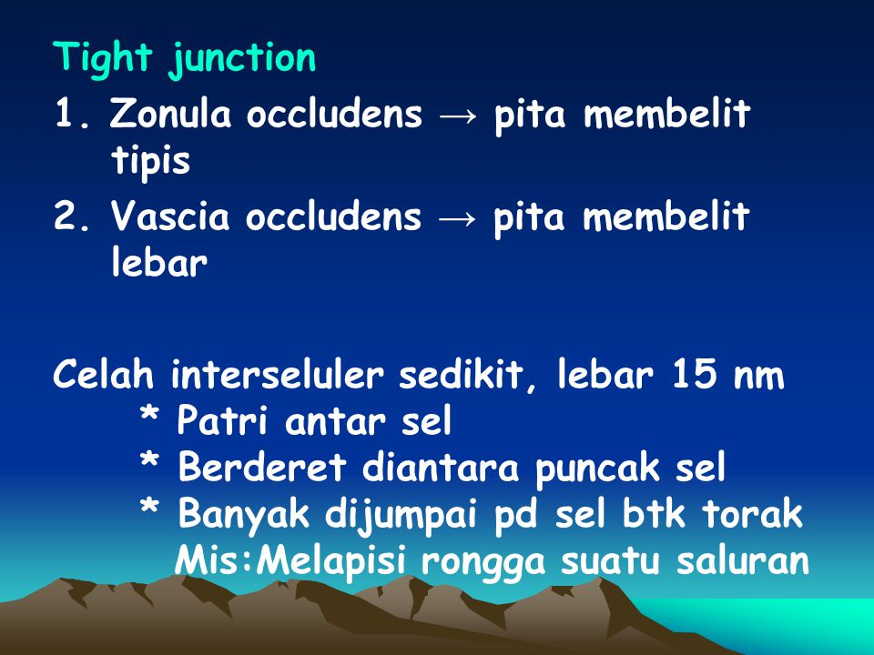 Tight junction 1. Zonula occludens → pita membelit tipis. 2. Vascia occludens → pita membelit lebar.