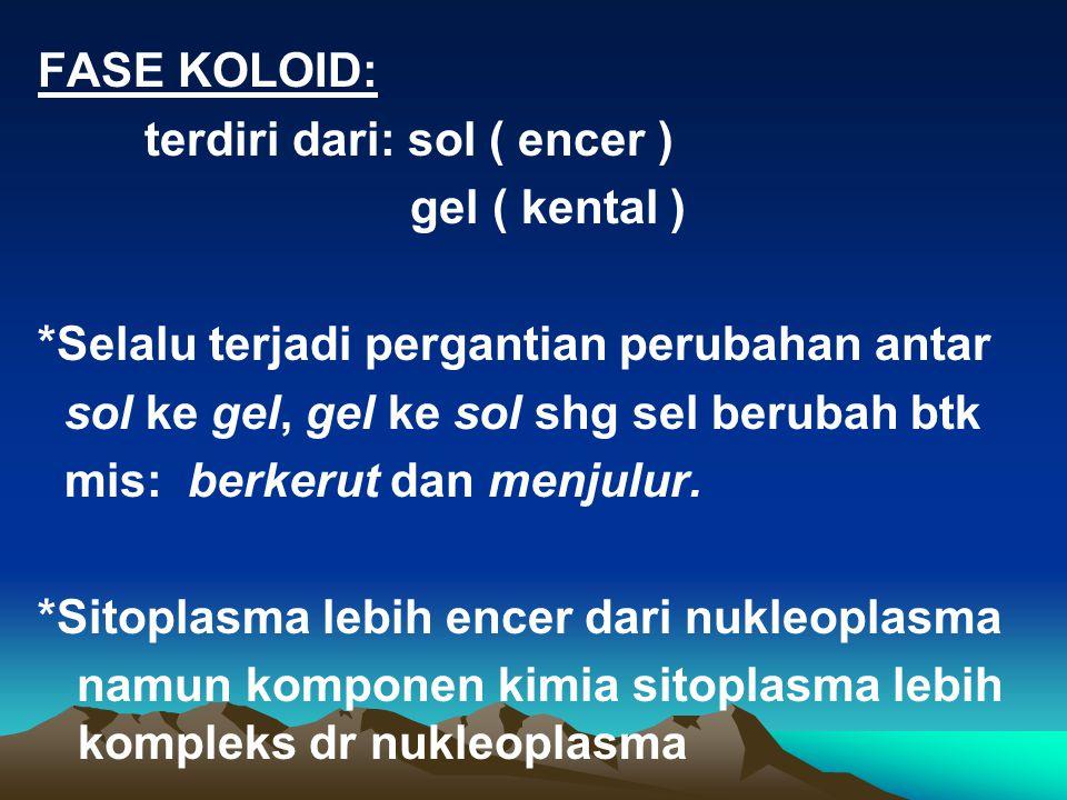 FASE KOLOID: terdiri dari: sol ( encer ) gel ( kental ) *Selalu terjadi pergantian perubahan antar.