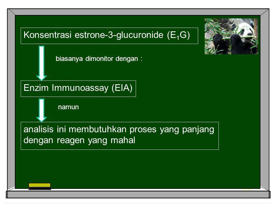 Konsentrasi estrone-3-glucuronide (E1G)