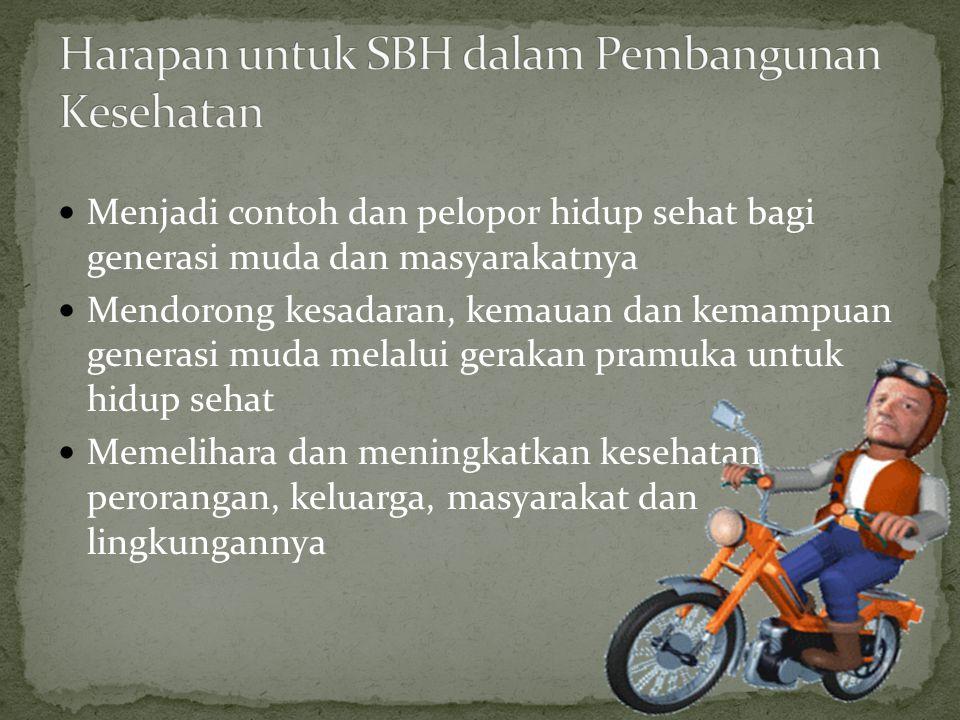 Harapan untuk SBH dalam Pembangunan Kesehatan