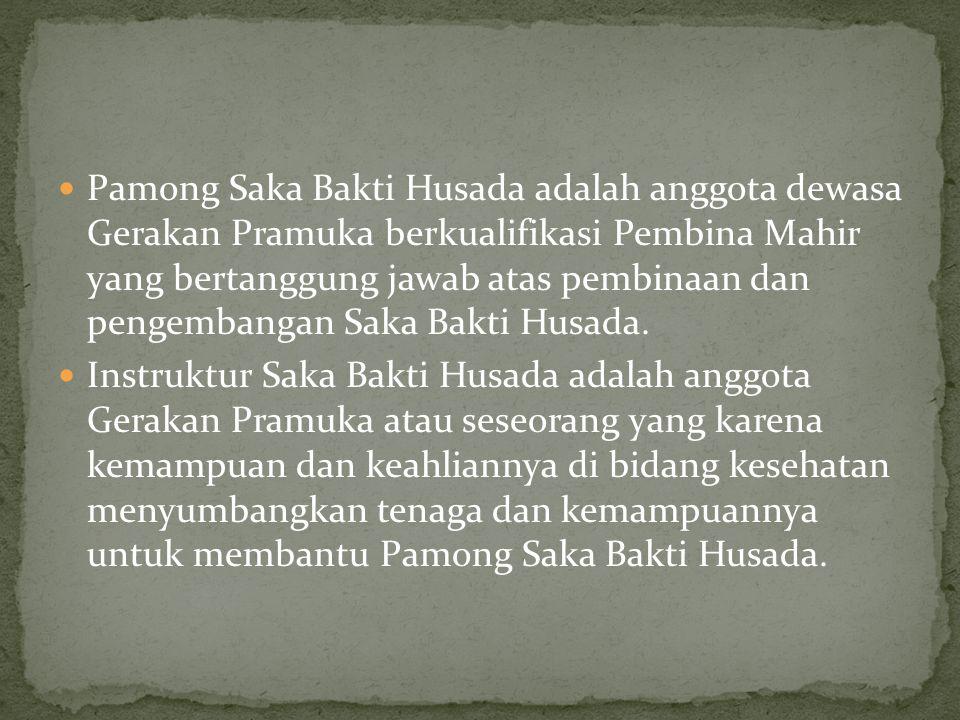 Pamong Saka Bakti Husada adalah anggota dewasa Gerakan Pramuka berkualifikasi Pembina Mahir yang bertanggung jawab atas pembinaan dan pengembangan Saka Bakti Husada.
