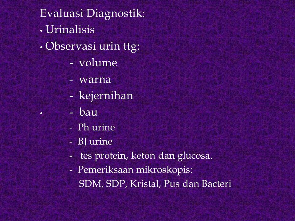 Evaluasi Diagnostik: Urinalisis Observasi urin ttg: - volume - warna