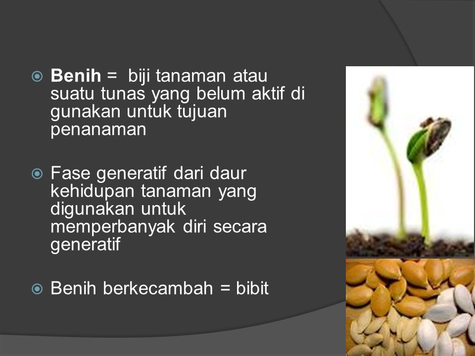 Benih = biji tanaman atau suatu tunas yang belum aktif di gunakan untuk tujuan penanaman