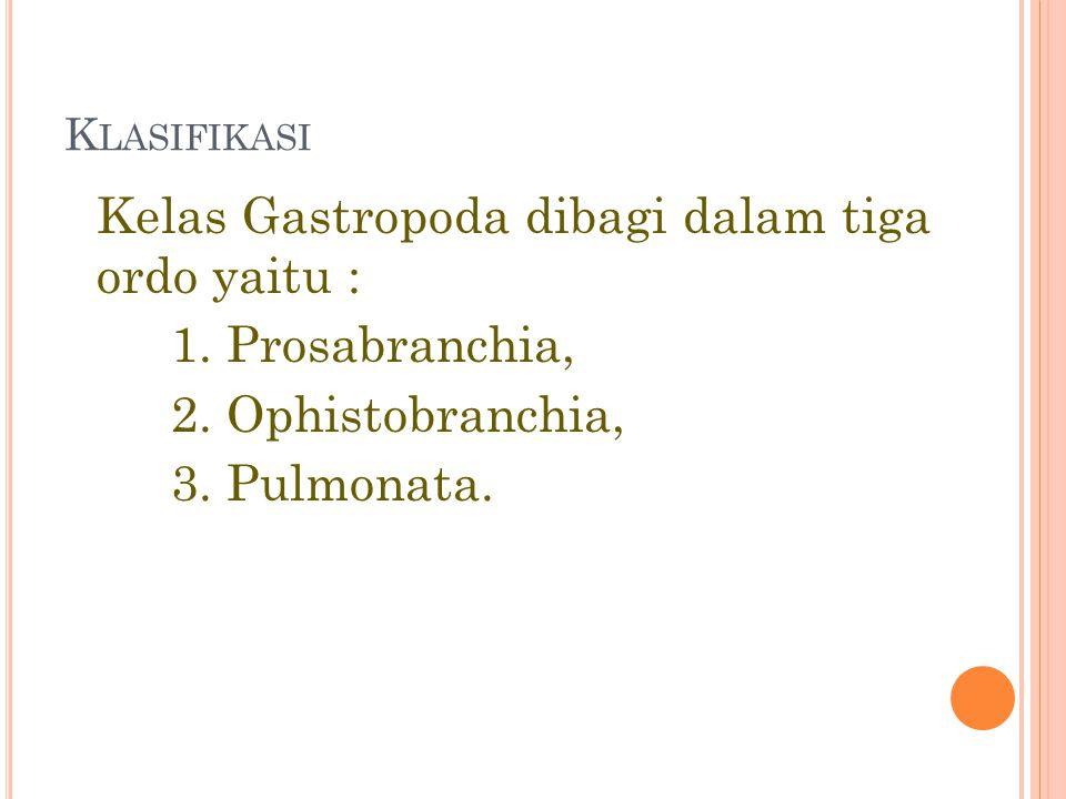 Klasifikasi Kelas Gastropoda dibagi dalam tiga ordo yaitu : 1.