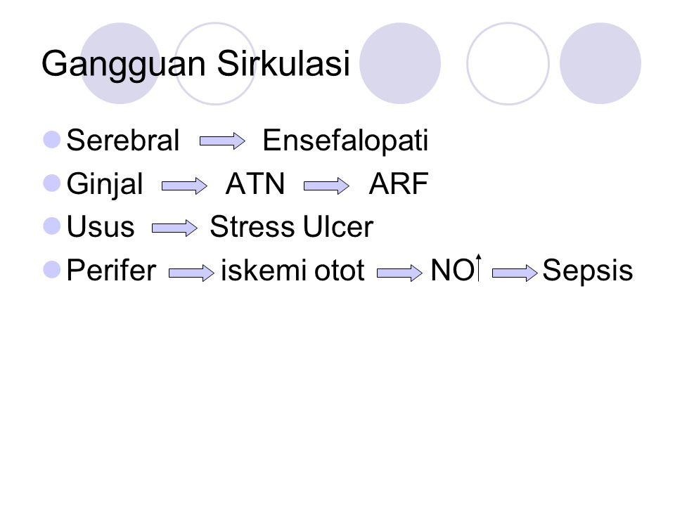 Gangguan Sirkulasi Serebral Ensefalopati Ginjal ATN ARF