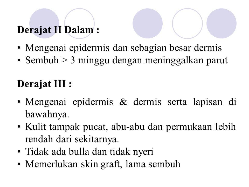 Derajat II Dalam : Mengenai epidermis dan sebagian besar dermis. Sembuh > 3 minggu dengan meninggalkan parut.