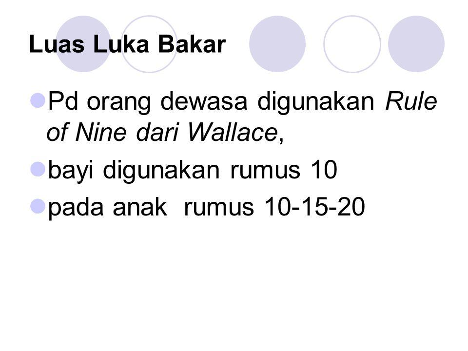 Pd orang dewasa digunakan Rule of Nine dari Wallace,