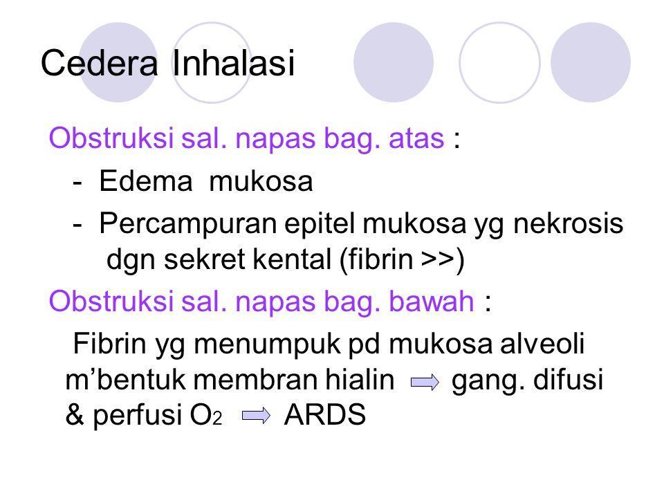 Cedera Inhalasi Obstruksi sal. napas bag. atas : - Edema mukosa