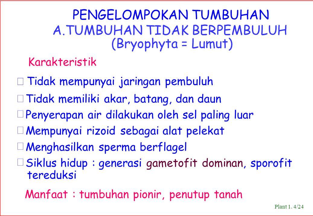 A.TUMBUHAN TIDAK BERPEMBULUH (Bryophyta = Lumut) Karakteristik
