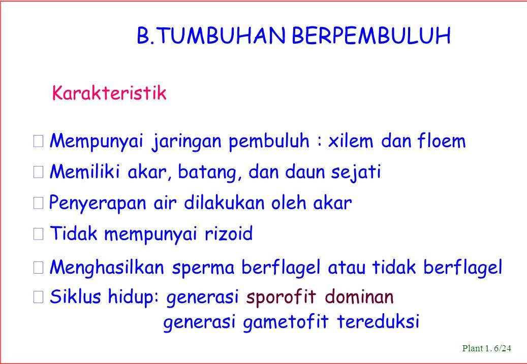 B.TUMBUHAN BERPEMBULUH