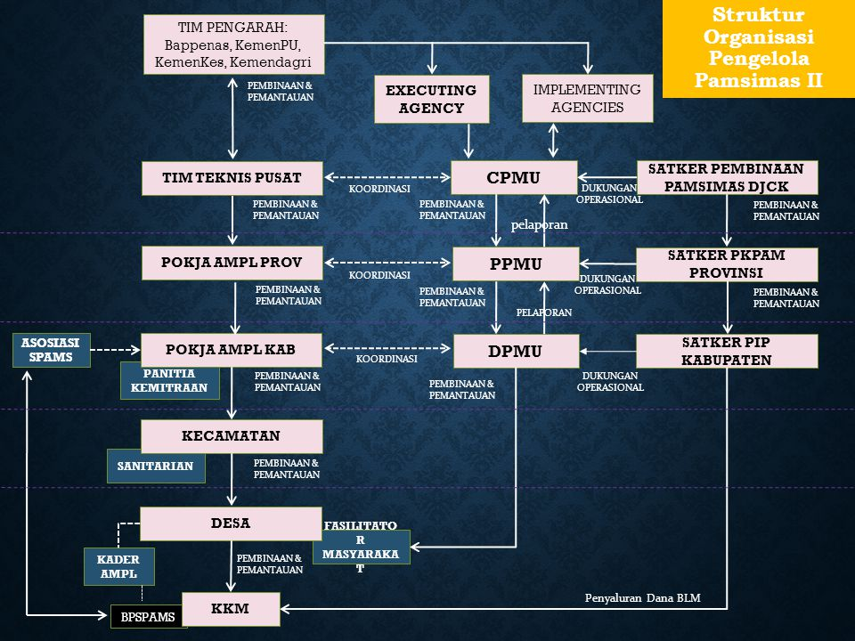 Struktur Organisasi Pengelola Pamsimas II