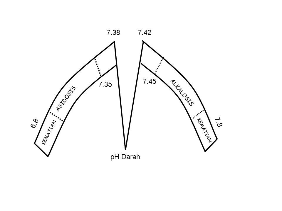 7.38 7.42 7.45 7.35 6.8 7.8 pH Darah ALKALOSIS ASIDOSIS KEMATIAN