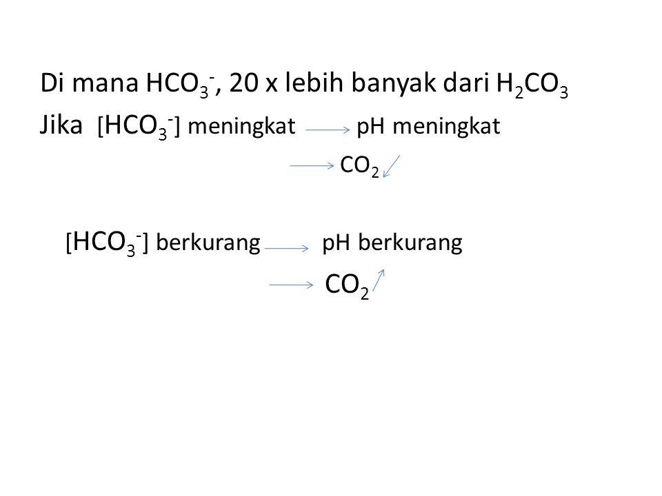 Di mana HCO3-, 20 x lebih banyak dari H2CO3